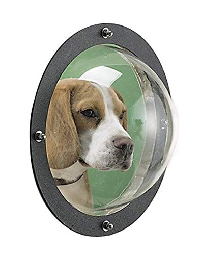 Amaping Pet Peek Fence Bubble Window for Dogs Durable Acrylic Dome Fence Window (Clear- Fence Funny Window) -