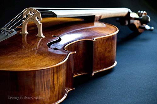 Cello Fine Art Photographic Print Unframed Stringed Instrument Photography Classical Music Gift for Musician Brown Blue Contemporary Art for Home or Office 5x7 8x10 8x12 11x14 12x18 16x20 16x24 20x30