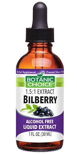 Botanic Choice Bilberry Alcohol Free Liquid Extract, 1 Fluid Ounce (Bilberry Liquid Extract)
