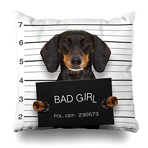 AlliuCoo Throw Pillow Covers Gangster Bad Dachshund for sale  Delivered anywhere in USA