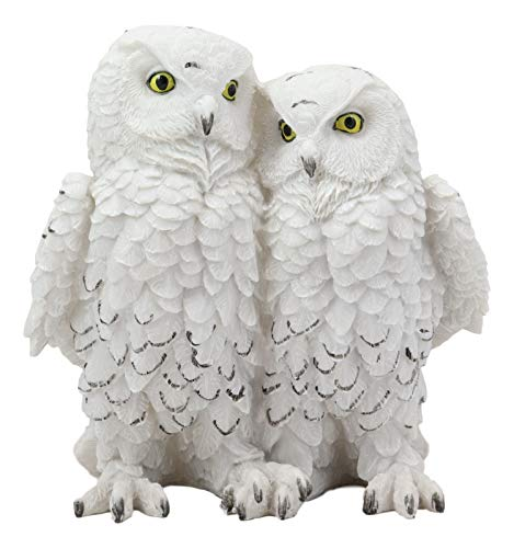 Ebros Mystical Two Snow White Owls Couple Statue 7.25