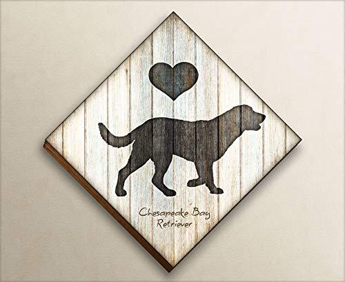 Chesapeake Bay Retriever Diamond Shaped Mounted Dog Art Print by Dan Morris
