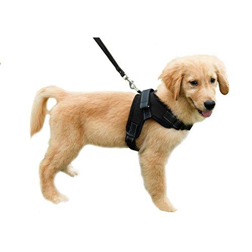 Lalawow Hundegeschirr Welpen-Softgeschirr Reflektierende Hund Halsband Gepolstert Extra Brustgurte mit Griff Hält Ihren Hund sicher auf Spaziergängen und Autofahrten (M - Chest 20.08-25.2