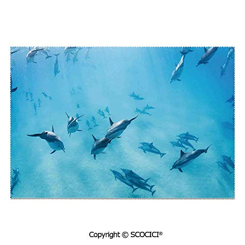 SCOCICI Set of 6 Durable Polyester Place Mats Heat Resistant Table Mats Group of Dolphins in Hawaii Wildlife Underwater Animals Tropical Aquatic Nature Picture for Party Kitchen Dining Table (Dolphin Tropical Mirror)