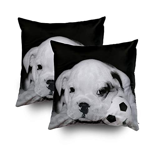 TOMWISH 2 Packs Hidden Zippered Pillowcase Halloween Soccer Puppy English Bulldog 20X20Inch,Decorative Throw Custom Cotton Pillow Case Cushion Cover for Home