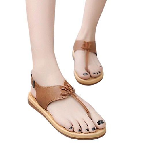 Malloom® Frauen Prise Flachem Boden Römischen Sandalen Anti Skidding Flip Flop Flachen Sandalen Römische Flachen Sandalen Beige