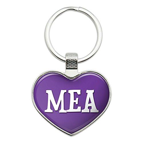 Metal Keychain Key Chain Ring Purple