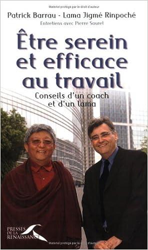 En ligne téléchargement Etre serein et efficace au travail : Conseils d'un Coach et d'un lama pdf, epub ebook