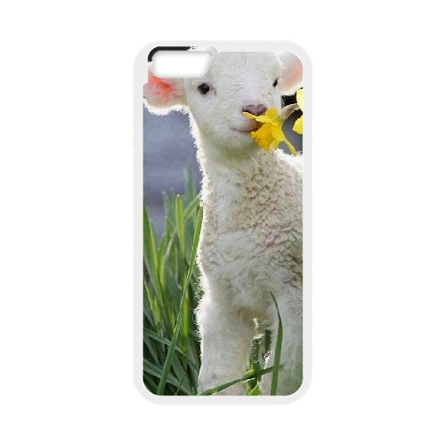 """LP-LG Phone Case Of Sheep For iPhone 6 Plus (5.5"""") [Pattern-3]"""