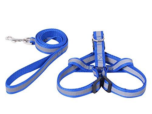 Pet Safety Light up Night Leash Rope Belt Dog Pet Led Harness Collar +chest...