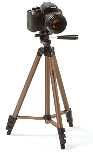 AmazonBasics 50-Inch Lightweight Tripod with Bag