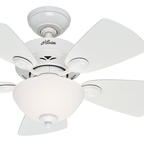 Hunter Fan 34 inch Snow White Finish Ceiling Fan with Painte
