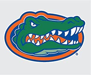Amazon Com Florida Gators Gator Head Logo Vinyl Decal 4