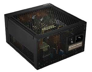 Silver Power SP-S460FL - Fuente de alimentación (460W, 110 - 240V, 3%, Pasivo, 20+4 pin ATX, IEC C14) Negro