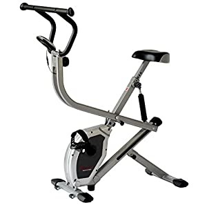 Sunny Health & Fitness Exercise Bike 2-in-1 Upright Bike and Rowing Machine - SF-B2620 from Sunny Distributor Inc.