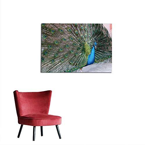 homehot Art Decor Decals Stickers Peacock - Calgary Zoo Mural 28
