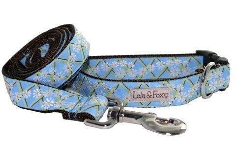 Lola & Foxy Blue Ranch 1-Inch Wide Dog Collar, Large, Light Blue