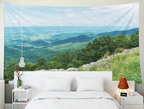 Dorm Tapestry, Fullentiart Wall Hanging Tapestry 80x60inch Mountain From Cliffs Skyline Drive National Park Franklin Overlook Shenandoah Virginia Decoration Room Birthday Gift Holiday Décor Tapestries -