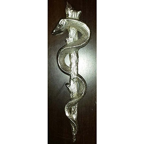 Caduceus Rod of Asclepius Medical Wall Art Caduceus Rod of Asclepius Medical Office Decor Medical Wall Decor Medical Office Art Medical Graduation gift MD gift doctor (Wall Caduceus)