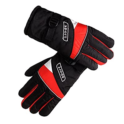 Rechargeable Heated Gloves Powered for Electrombile
