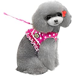 SMALLLEE_Lucky_Store Small Dog Cat Sweet Dots Pattern Vest Harness Leash Set Mesh Padded Lead Pink L