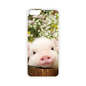 "funny pig Phone Case for Iphone6 Plus 5.5"",diy funny pig phone case series 1"