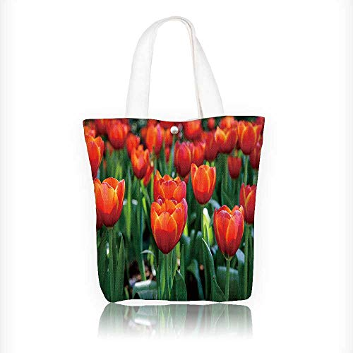 Canvas Tote Bag colorful field of tulips in the morning light very beautiful tulips in bloom Hanbag Women Shoulder Bag Fashion Tote Bag W11xH11xD3 INCH ()