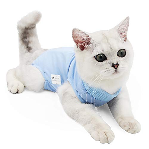 Cat Professional Recovery Suit for Abdominal Wounds or Skin Diseases, E-Collar Alternative for Cats and Dogs, After Surgery Wear, Home Clothing (S, Blue)