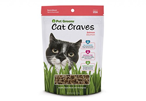 Pet Greens Treats Savory Salmon Semi-Moist Cat Treats