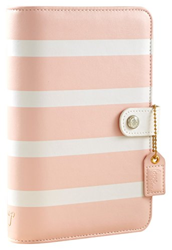 Webster's Pages Blush Stripe Color Crush Personal Planner Kit (CCPK001-BS)