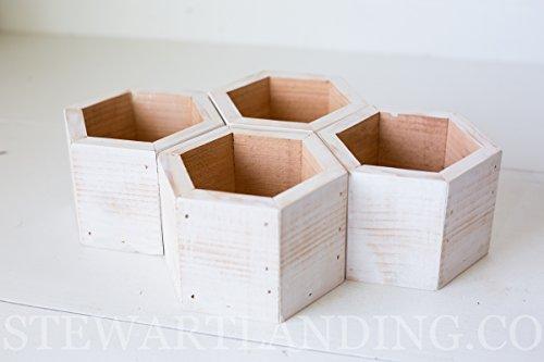 Set of 4 Hexagon Succulent Planter Boxes [5.25