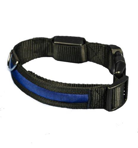 Aviditi BC504-M LED Lighted Dog Collar, Black with Blue LED Lights, Medium, My Pet Supplies