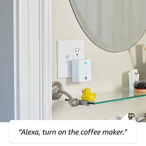 Echo Flex Plug-in mini smart speaker
