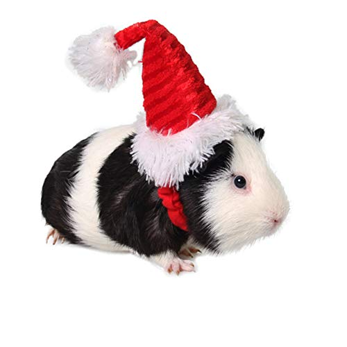 Small Animal Pet Christmas Hat for Dog Hamster Ferret Rabbit Kitten,Pet Elastic Santa Claus Cap Holiday Costumes Headgear for Cosplay Halloween Party Wear,Ideal for Bunny Squirrel Guinea Pig Dog Cat