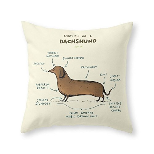 Society6 Anatomy Of A Dachshund Throw Pillow Indoor Cover  w