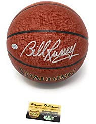Bill Russell Boston Celtics Signed Autograph NBA Game Basketball Holly Collectibles Certified