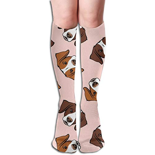 - Brittanys (liver U0026 Orange) - Pink Unisex Knee High Long Socks Over Calf Casual Sport Stocking