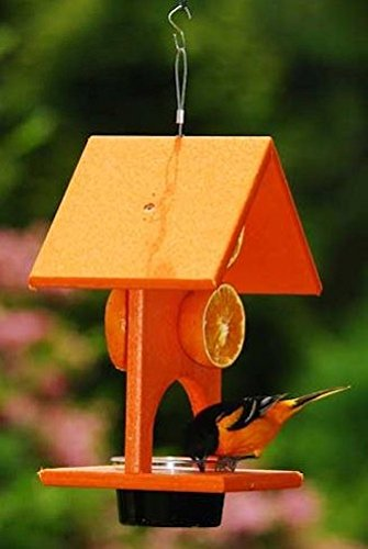 Songbird Essentials SERUBFJF Fruit and Jelly Oriole Feeder (Set of 1)