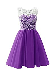 JY Women's Ruched Sleeveless Lace Short Party Dresses Evening Gowns