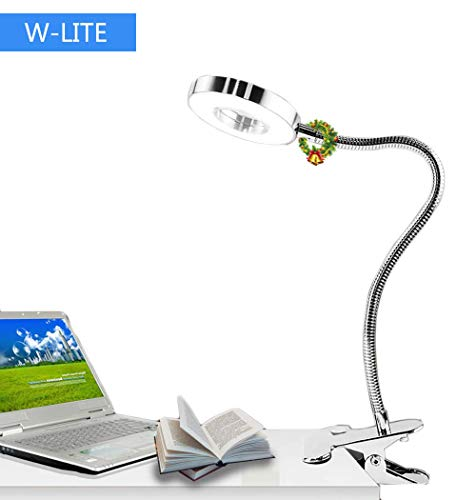 - W-LITE 6W LED USB Reading Clip Laptop Lamp for Book,Piano,Bed Headboard,Desk, Eye-Care 2 Light Color Switchable, Adapter Included, Silver
