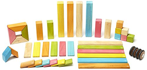 42 Piece Tegu Magnetic Wooden Block Set, Tints by Tegu