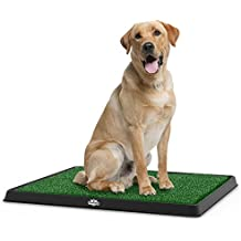 """Artificial Grass Bathroom Mat for Puppies and Small Pets- Portable Potty Trainer for Indoor and Outdoor Use by PETMAKER- Puppy Essentials, 20"""" x 25"""""""