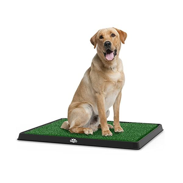 Artificial Grass Bathroom Mat for Puppies and Small Pets- Portable Potty Trainer for Indoor and Outdoor Use by PETMAKER- Puppy Essentials, 20″ x 25″