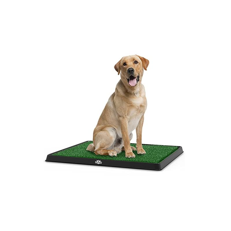 """dog supplies online artificial grass bathroom mat for puppies and small pets- portable potty trainer for indoor and outdoor use by petmaker- puppy essentials, 20"""" x 25"""""""