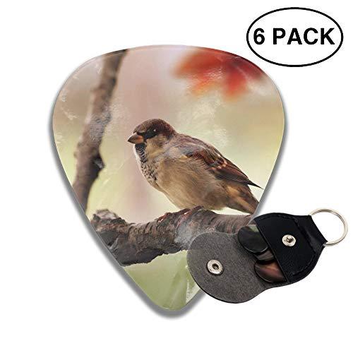 (Celluloid Guitar Picks 3D Printed Animal Sparrow Birds Best Guitar Bass Gift for Lover)