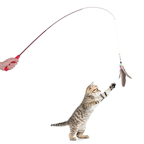 Feather Teaser and Exerciser Interactive Cat Toy with Feathe