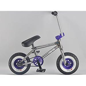 Reggie Rocker Raw BMX Mini BMX Bike