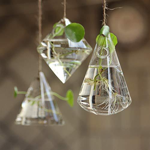 KNIKGLASS 3 Packs Geometric Glass Vases,Different Shapes,Hanging Glass Plants Planters,Transparent Hydroponic Glass Vase…