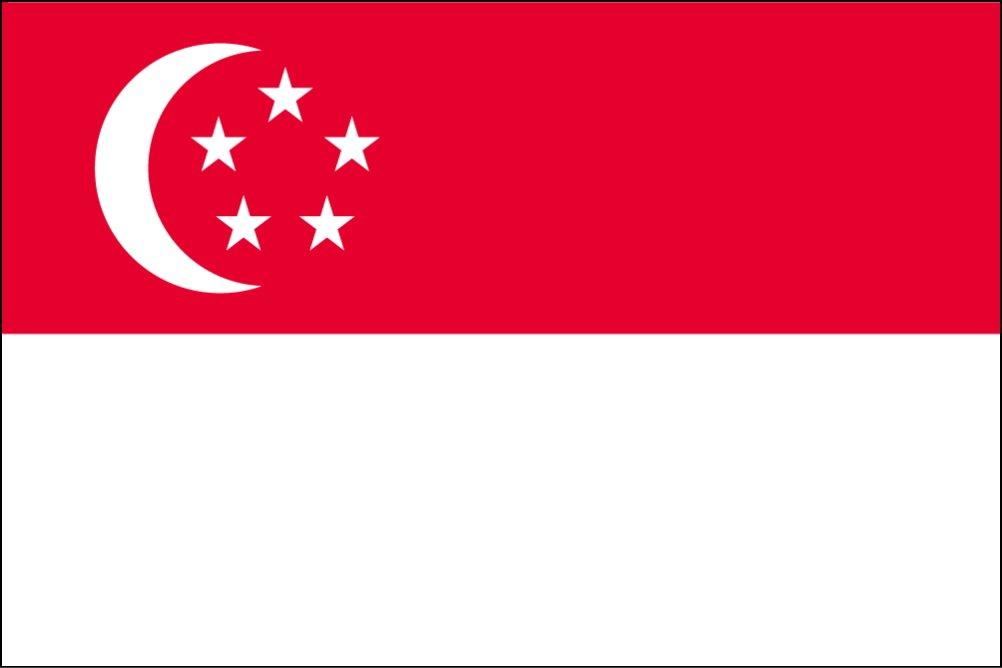 【まとめ買い】 世界の国旗 シンガポール [120×180cm 国旗 [120×180cm 国旗 高級テトロン製] 高級テトロン製] B0090ZYNC2, ブランクチュール:8f7e4bd2 --- vietnox.com