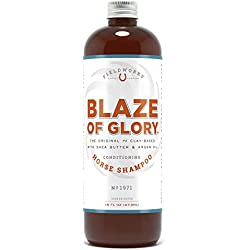 Organic Concentrated Natural 2 in 1 Horse Conditioning Shampoo Detangles Creates High Shine Whitens, Deodorizes, Moisturizes, Anti-Fungal Bio-Degradable. Long-Lasting Breeder Approved. Blaze of Glory.